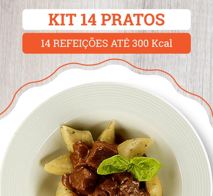 Kit 14 Pratos